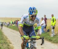 Michael Matthews Riding on a Cobblestone Road - Tour de France 2 Stock Photo