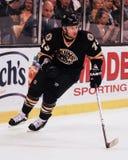 Michael Ryder, μπροστινός, Boston Bruins Στοκ Εικόνες