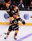 Michael Ryder, en avant, Boston Bruins images stock