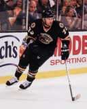 Michael Ryder, en avant, Boston Bruins photo stock