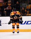 Michael Ryder forward, Boston Bruins Stock Image