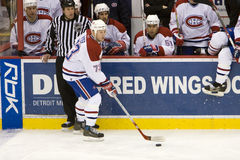 Michael Ryder With Puck Stock Image
