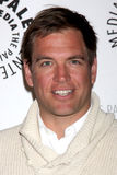 Michael Weatherly Royalty Free Stock Image