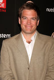 Michael Weatherly Stock Photo