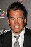 Michael Weatherly Royalty Free Stock Images