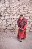 Michaelita z krykieta nietoperzem w Ladakh Fotografia Royalty Free