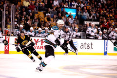 Michal Handzus San Jose Sharks Royalty Free Stock Image
