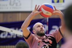 Michal Sladecek - volleyball Royalty Free Stock Photo
