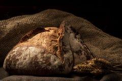 Miche de pain croustillante d'or photo stock