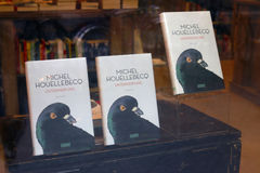 Michel Houellebecq roman Royaltyfria Foton