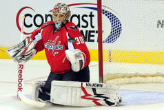 Michel Neuvirth, Capitals Goalie Royalty Free Stock Photography