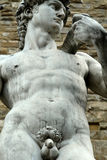 Michelangelo's Davide Royalty Free Stock Image