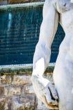 Michelangelo ` s David, Florence Italy Royaltyfria Foton