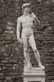 Michelangelo's sculpture of David. This copy of the famous statue is in the Piazza della Signoria, Florence, Italy Royalty Free Stock Photography