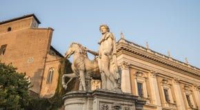 Michelangelos Piazza del Campidoglio - en av statyerna av Dioscurien på solnedgång rome Arkivfoto