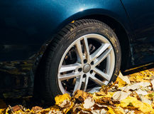 Michelin Pilot Alpin Car In Autumn Foliage Tire Stock Photos