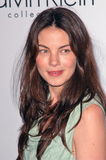 Michelle Monaghan,Calvin Klein Royalty Free Stock Photos