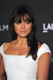 Michelle Rodriguez. LOS ANGELES, CA - NOVEMBER 1, 2014: Michelle Rodriguez at the 2014 LACMA Art+Film Gala at the Los Angeles County Museum of Art royalty free stock photo