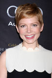 Michelle Williams Stock Photography