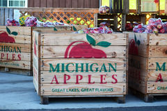 Michigan äpplen Royaltyfria Foton