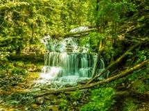 Michigan bonito Fotos de Stock Royalty Free