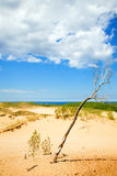Michigan dunes Royalty Free Stock Photography