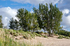 Michigan dunes on a windy summers day Stock Photography