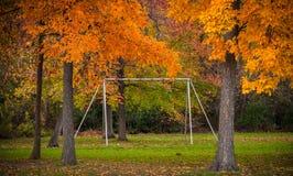 Michigan Fall Colors Royalty Free Stock Photo