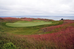 Michigan Golf Course. A shot of Arcadia Bluffs Golf Course, in Arcadia, Michigan.  The course is situated along side Lake Michigan offering beautiful views of Royalty Free Stock Image