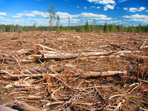 Michigan Logging Industry Royalty Free Stock Photography