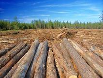 Michigan Logging Industry Stock Image