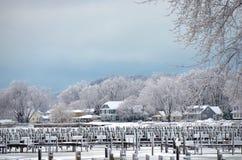 Michigan marina in winter Royalty Free Stock Photos