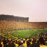 Michigan Stadium Photographie stock libre de droits