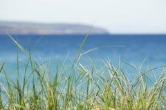 Michigan tropical molha na cor azul do aqua com conceito ideal dramático emocional da grama da duna da praia Copyspace imagens de stock