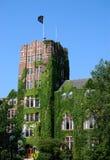 michigan unionuniversitetar Royaltyfri Fotografi