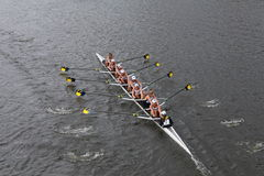 Michigan University Rowing races in the Head of Charles Regatta Women's Championship Eights Royalty Free Stock Photos