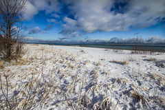 Michigan zimy plaży tło Lub krajobraz Obraz Royalty Free