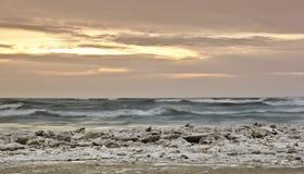 Michigansee-Winter-Sonnenaufgang Stockfotografie