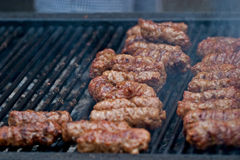 Mici Royalty Free Stock Photos