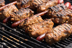 Mici and sausage Stock Image
