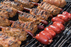 Mici and sausage Royalty Free Stock Image