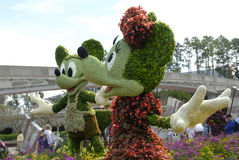 Mickey & Minnie Topiary. An image of a topiary taken in March 2013, during the 20th anniversary of the Epcot Flower Show, at Disney World Royalty Free Stock Photos
