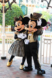 Mickey Mouse och Minnie mus. royaltyfri bild
