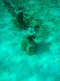Mickey Mouse op een boeg van een schip Stock Fotografie