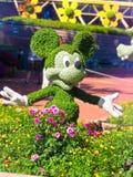 Mickey Mouse topiary - Epcot internationell blomma och trädgårdfestival Arkivfoto