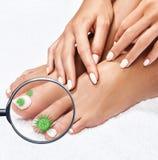 Micróbios em mostras de pés fêmeas mygnifying o vidro Imagens de Stock Royalty Free