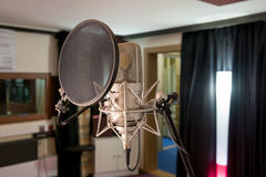 Micrófono profesional Fotos de archivo libres de regalías