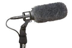 Micrófono y parabrisas Fotografía de archivo libre de regalías