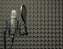 Micrófono en cabina acústica Fotos de archivo libres de regalías