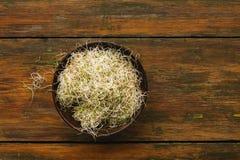 Micro пшеницы зеленеет шар на деревянной предпосылке Стоковые Фотографии RF